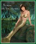 Ali sirena 1