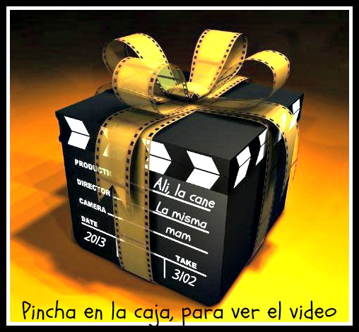 video FELICITACION 2013 - copia