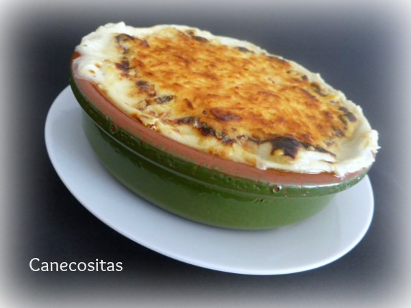 Falsos canelones 1 thermomix